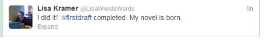 Tweeting the birth of a novel